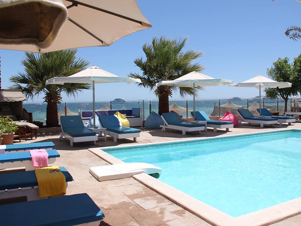 Het zwembad nemo dive club hotel - Zwembad in het terras ...