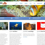 Frontpage website